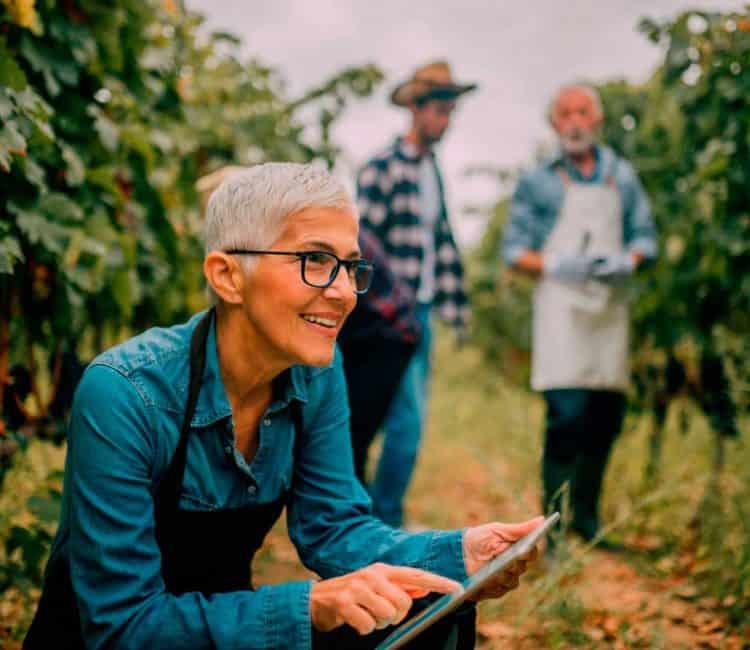 Tecnologia no agronegócio: os benefícios do BI 5